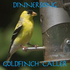 Dinnersong Goldfinch Bird Caller