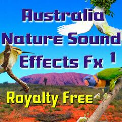 Australia Nature Sound Effects Fx 1 Royalty Free