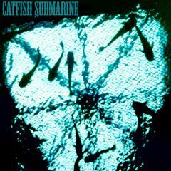 Catfish Submarine