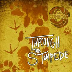 Through the Stampede