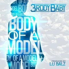 Body of a Model