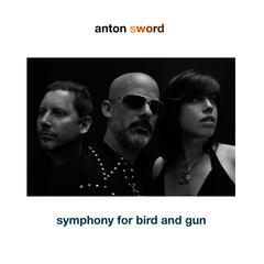 Symphony for Bird and Gun