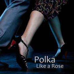 Polka - Like a Rose Polka - Polka Music