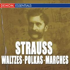Great Strauss Waltzes, Polkas & Marches: Peter Falk & The Viennese Folk Opera Orchestra