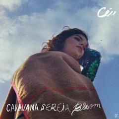 Caravana Sereia Bloom