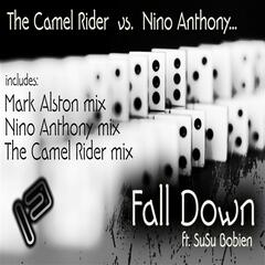 Fall Down ft. SuSu Bobien