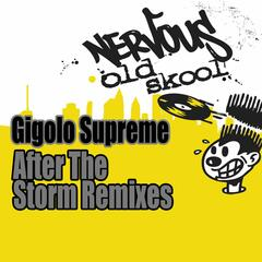 After The Storm [Remixes]