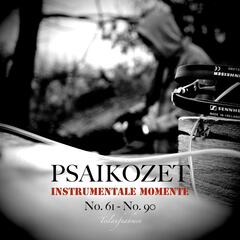 Instrumentale Momente No. 61 - No. 90 (Teilaufnahmen)