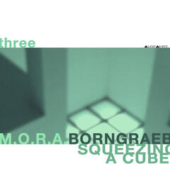 Three: Squeezing a Cube - Dedicated to Police Station of Mestia (feat. C.Borngräber)