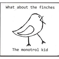 What About The Finches