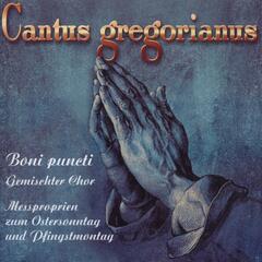 Cantus Gregorianus, Vol. 1