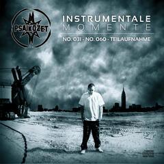 Instrumentale Momente: No. 031 - No. 060 - Teilaufnahme