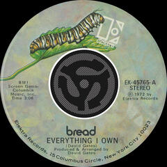 Everything I Own / I Don't Love You [Digital 45]