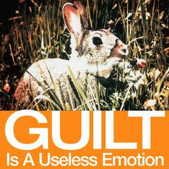 Guilt Is A Useless Emotion [US DMD - DJ version]