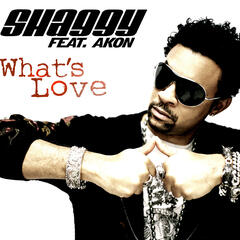What's Love (feat. Akon)