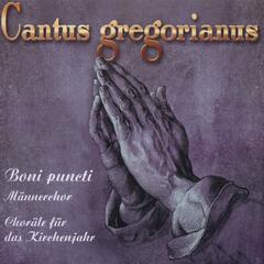 Cantus Gregorianus 2