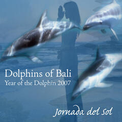 Dolphins Of Bali 2007