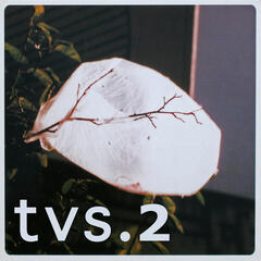 tvs.2 (11 trax of Downtempo & Urban Chill Dub)