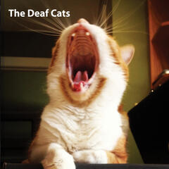 The Deaf Cats