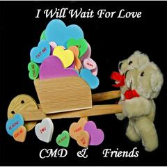 I Will Wait for Love