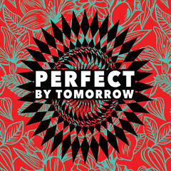 Perfect By Tomorrow