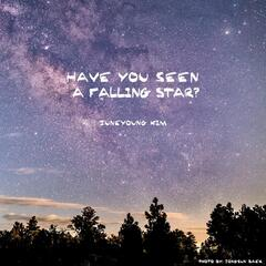 Have You Seen a Falling Star?