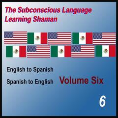 English to Spanish, Spanish to English, Vol. 6