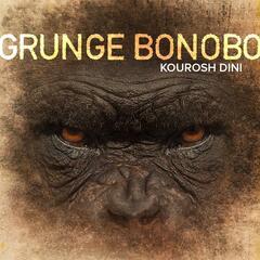 Grunge Bonobo