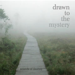 Drawn to the Mystery