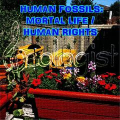 Human Fossils: Mortal Life / Human Rights