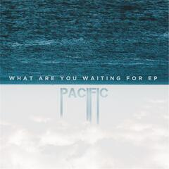 What Are You Waiting For - EP