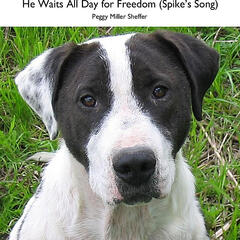 He Waits All Day for Freedom (Spike's Song)