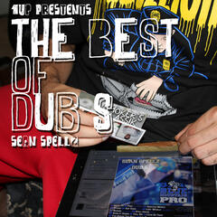 The Best of Dub S