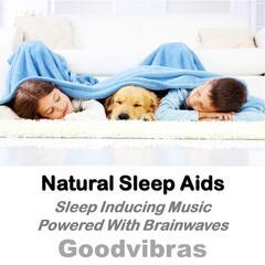 Natural Sleep Aids (Sleep Inducing Music Powered With Brainwaves)