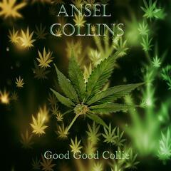 Good Good Collie