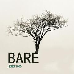 Bare (Acoustic Songs for the Senile)