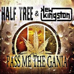 Pass Me the Ganja (feat. New Kingston)
