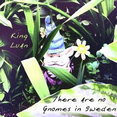 There Are No Gnomes in Sweden
