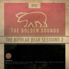 The Bipolar Bear Sessions 2