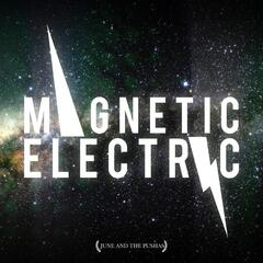 Magnetic Electric