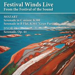 Festival Winds Live At the Festival of the Sound