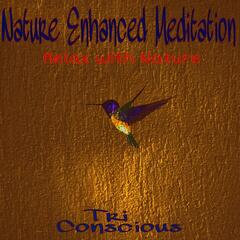 Nature Enhanced Meditation