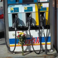 Gas Station Roses
