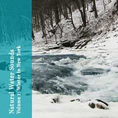 Natural Water Sounds, Vol. 1: Winter in New York