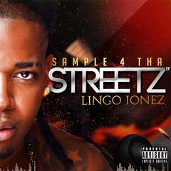 Sample 4 Tha Streetz