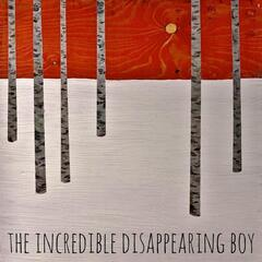 The Incredible Disappearing Boy