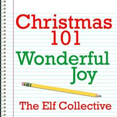 Christmas 101 - Wonderful Joy