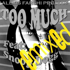 Too Much (Remixes)