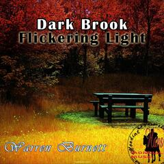 Dark Brook Flickering Light