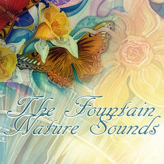 The Fountain Nature Sounds - Sounds of Nature, White Noise for Mindfullness Meditation, Massage, Spa Music, Yoga